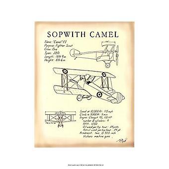 Sopwith Camel Poster Print by Tara Friel (13 x 19)