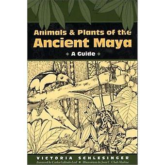 Zwierzęta i rośliny starożytnych Majów - Przewodnik przez Victoria Schlesing