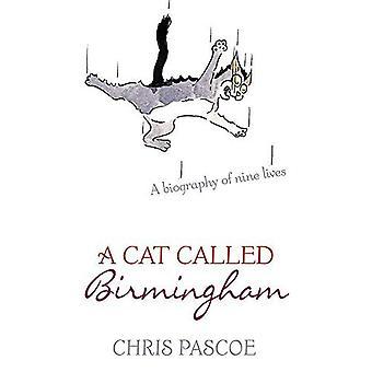 Un chat appelé Birmingham