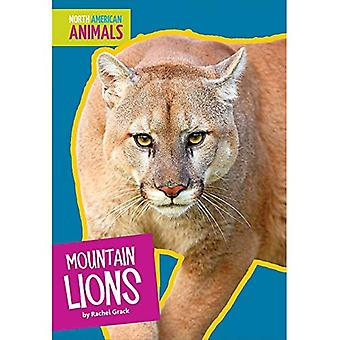 Mountain Lions (North American Animals)