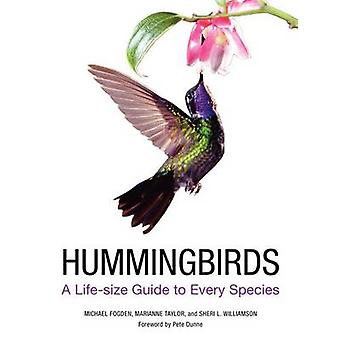 Hummingbirds - A Life-Size Guide to Every Species by Michael Fogden -