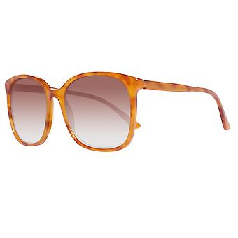 Oxydo sunglasses ladies Brown
