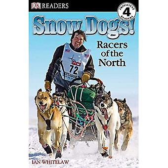 Snow Dogs!: Racers of the North (DK Reader - Level 4)