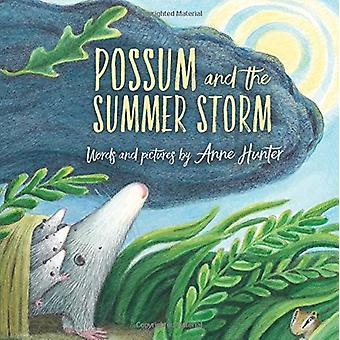 Possum and the Summer Storm by Anne Hunter - 9780544898912 Book