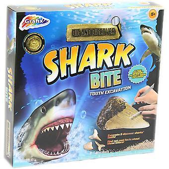 Grafix graven en ontdekken-haai beet tand opgraving Kit