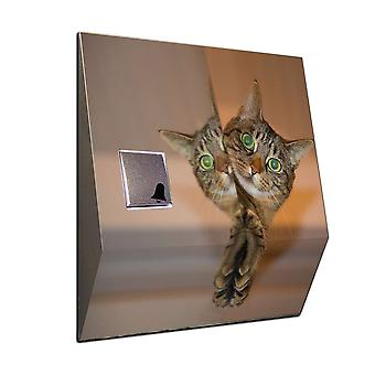 Radio Gong motif cat in the mirror as the wireless front door bell V2A