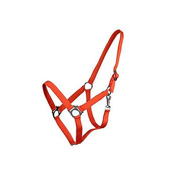 QHP Adjustable Orange Pony Bridle (Horses , Pony world , Bridles and reins)