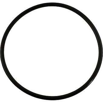 Pentair 355227 Whisperflo Diffuser O-Ring