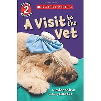A Visit to the Vet (Scholastic Reader: Level 2)
