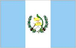 Guatemalan Flag 5ft x 3ft With Eyelets For Hanging