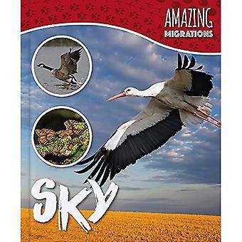 Sky (Amazing Migrations)