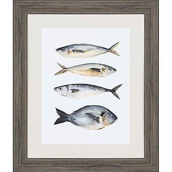 Four fish i coastal style by paragon