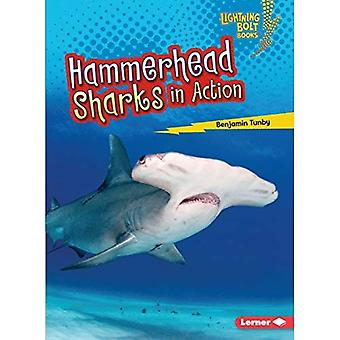 Hammerhead Sharks in Action� (Lightning Bolt Books Shark World)