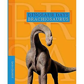 Brachiosaurus (dinosaure jours)