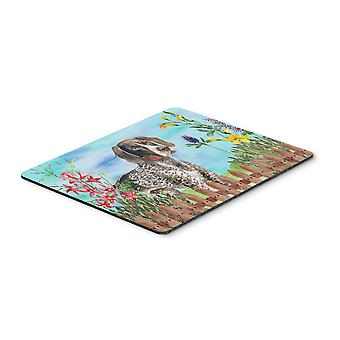 German Shorthaired Pointer Spring Mouse Pad, Hot Pad or Trivet