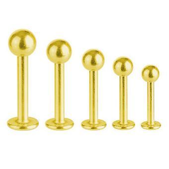 Labret Bar Tragus Monroe Piercing Gold vergoldet Titan 1,6 mm mit Kugel | 5 - 16 mm