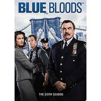 Blue Bloods: Die sechste Staffel [DVD] USA import