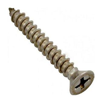 Pentair 552539 Stainless Steel Screw for Square Drain