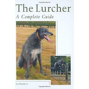 O Lurcher: Um guia completo