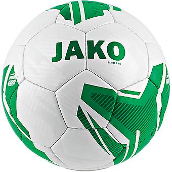 James youth ball striker 2.0 HS