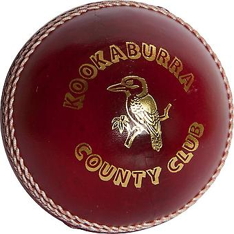 Kookaburra County Club Cricket Ball