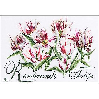 Tulipes de Rembrandt sur Aida compté point de croix Kit-23.25