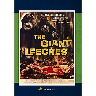Attack of the Giant Leeches [DVD] USA import