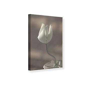 Leinwand drucken die Tulpe In Sepia