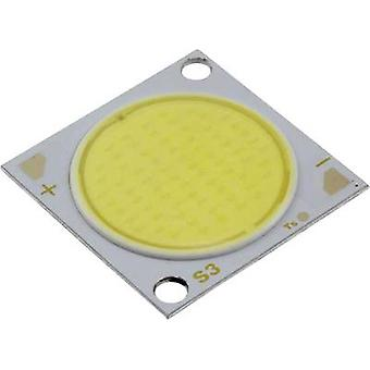HighPower LED Cold white 55.2 W 3650 lm 120 °