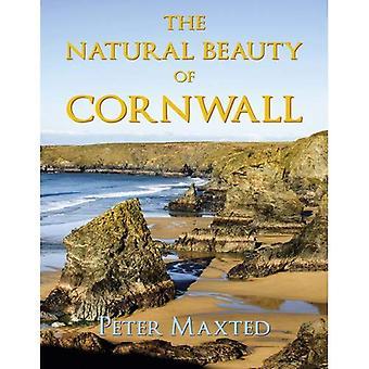 The Natural Beauty of Cornwall