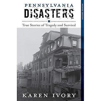 Les catastrophes de Pennsylvanie: Histoires vraies de la tragédie et de survie (série de catastrophes)