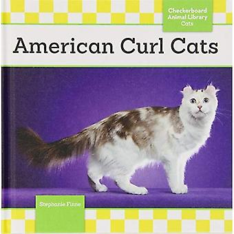 American Curl Cats (Checkerboard Animal Library: Cats)