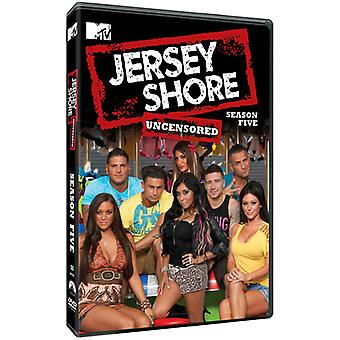 Jersey Shore: Sæson 5 [DVD] USA import