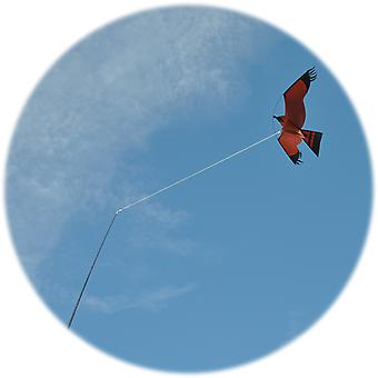 Kite Pole Tether for Bird Kites - this tether prevents tangles
