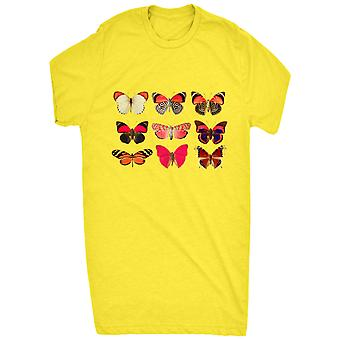 Renowned Assorted Butterfly Collection 1