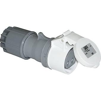 CEE connector 32 A 2-pin 42 V PCE 2