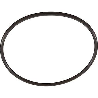Pentair 355227 Diffuser O-Ring Fits Pentair WhisperFlo, IntelliFlo WFE