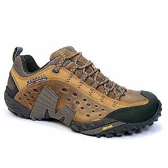 Merrell Intercept J73705 universal  men shoes