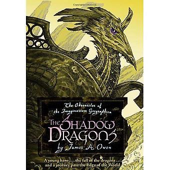 Les Dragons de l'ombre: Les chroniques de l'Imaginarium Geographica, livre 4