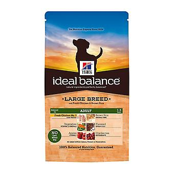 Hill's Ideal Balance Canine Adult Large Breed With Fresh Chicken And Brown Rice 12kg