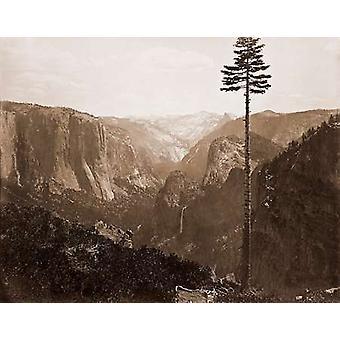 La vallée d'Yosemite depuis la meilleure impression de Poster vue générale 1866 par Carleton Watkins