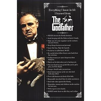The Godfather Everything I know Poster Poster Print