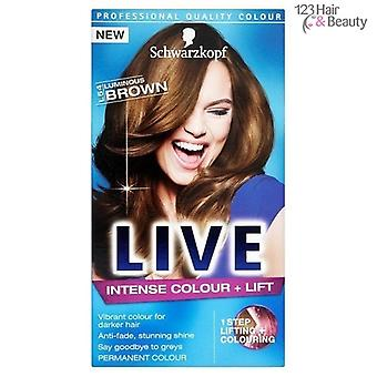 Schwarzkopf LIVE Intense Colour + Lift - Luminous Brown (L54)