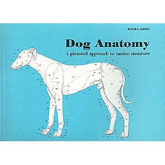 Anatomie van de hond - een picturale benadering van Canine structuur door Peter C. Goo