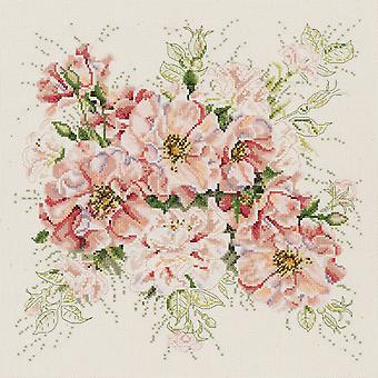 Garden Roses Counted Cross Stitch Kit 13