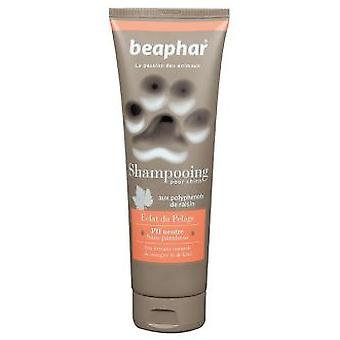 Beaphar Shiny Coat Premium Shampoo (Dogs , Grooming & Wellbeing , Shampoos)