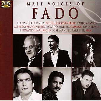 Male Voices of Fado/Various - Male Voices of Fado/Various [CD] USA import