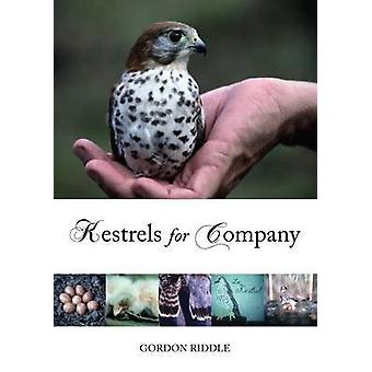 Kestrels for Company by Gordon Riddle - 9781849950299 Book