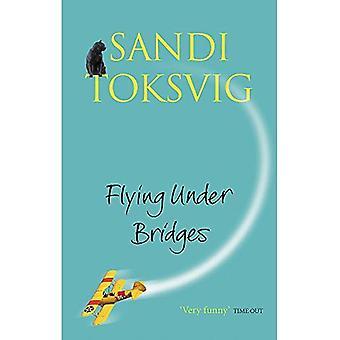 Vliegen onder bruggen