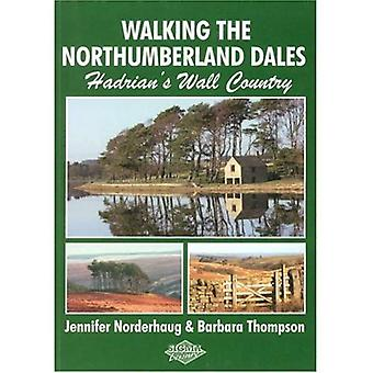 Walking the Northumberland Dales: Hadrian's Wall Country
